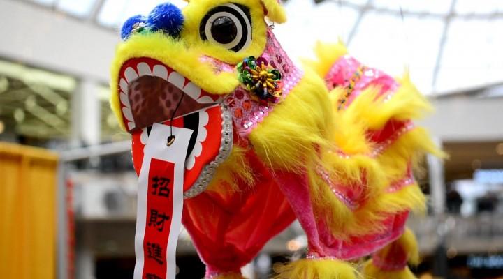 WEST EDMONTON MALL CHINESE NEW YEAR EXTRAVAGANZA 2014